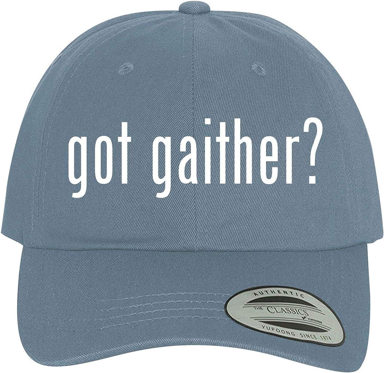 Comfortable Dad Hat Baseball Cap BH Cool Designs got Gaither?