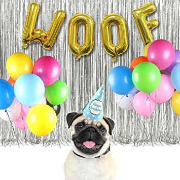 WOOF Balloons Dog Birthday Party Decorations Kit Metallic Tinsel Foil Fringe Happy Hat