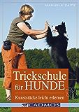 Trickschule für Hunde: Kunststücke leicht erlernen