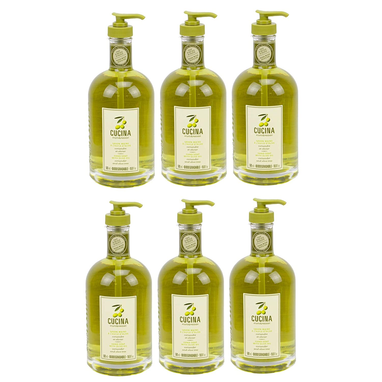 Cucina Purifying Hand Wash Coriander and Olive Tree 16.9 Fl Oz Glass Bottle (6 pack)