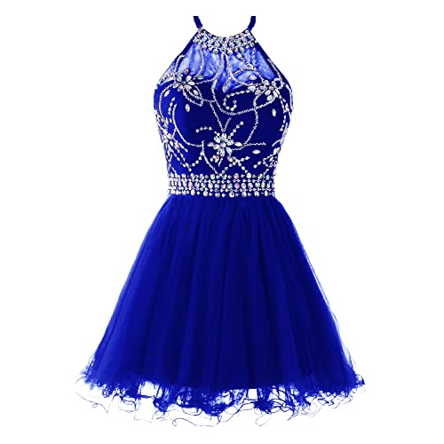 Royal Blue Homecoming Dresses: Amazon.com