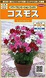 サカタのタネ 実咲花7184 コスモス ドワーフセンセーションミックス 00907184