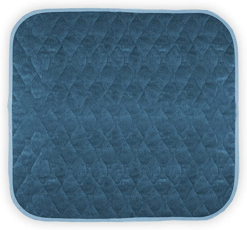 "Americare Absorbent Washable Waterproof Seat Protector Pads 21""x22"" - Blue: Health & Personal Care"