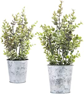 MyGift Set of 2 Tabletop Lavender Boxwood Plants in Silver Metal Pots