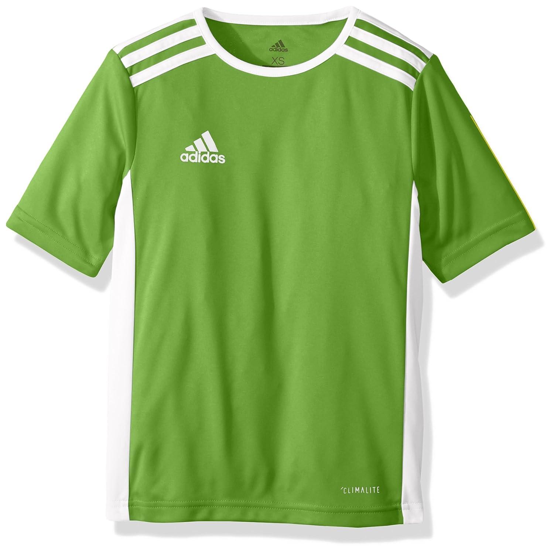 8a0b620d1fe adidas Boys Soccer Entrada 18 Jersey F1706GHTM111Y-P