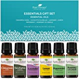 Plant Therapy Essentials Gift Set - Lavender, Peppermint, Eucalyptus, Lemon, Rosemary, Cinnamon 100% Pure, Undiluted…