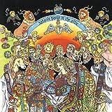SATANIC PANIC IN THE ATTIC [Vinyl]