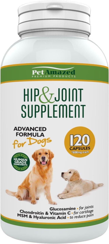 Glucosamina para perros - Glucosamine for Dogs