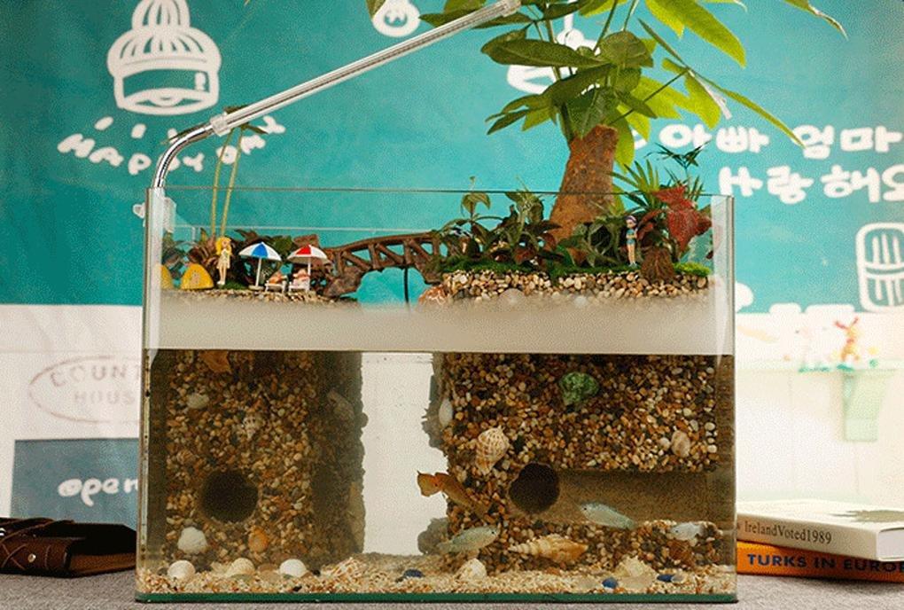 tanque de peces de acuario ecológico por lo que el vidrio templado, anti-niebla y la bruma humidificador vista anfibio vivo césped real paisaje de la ...