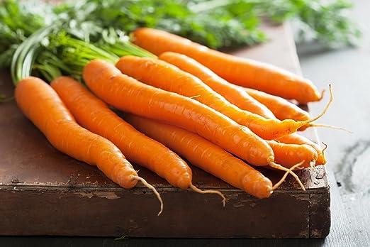 Zanahoria Rodos F1 Tipo De Raiz Pequena Variedad Media Temprana Semilla Amazon Es Jardin Ver más ideas sobre jugo de zanahoria, zanahoria recetas, zanahoria. amazon es