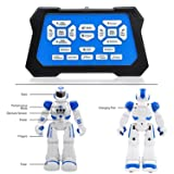 Bix Robots Toys For Kids,Interactive Toy Walking