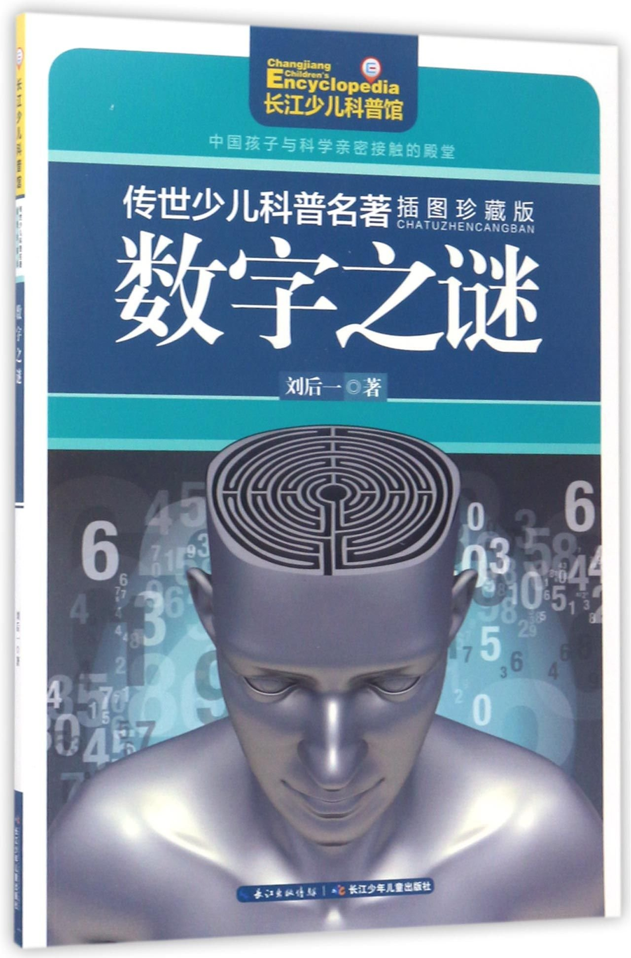 Read Online Figure Puzzles (Illustrations Collective Edition) (Chinese Edition) pdf