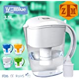 ALKALINE pH PLUS WHITE ionized Water PITCHER, 3.5 L By WellBlue 1 Filters (2 Month Supply).