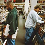 Endtroducing...(2 LPS) [Vinyl LP]