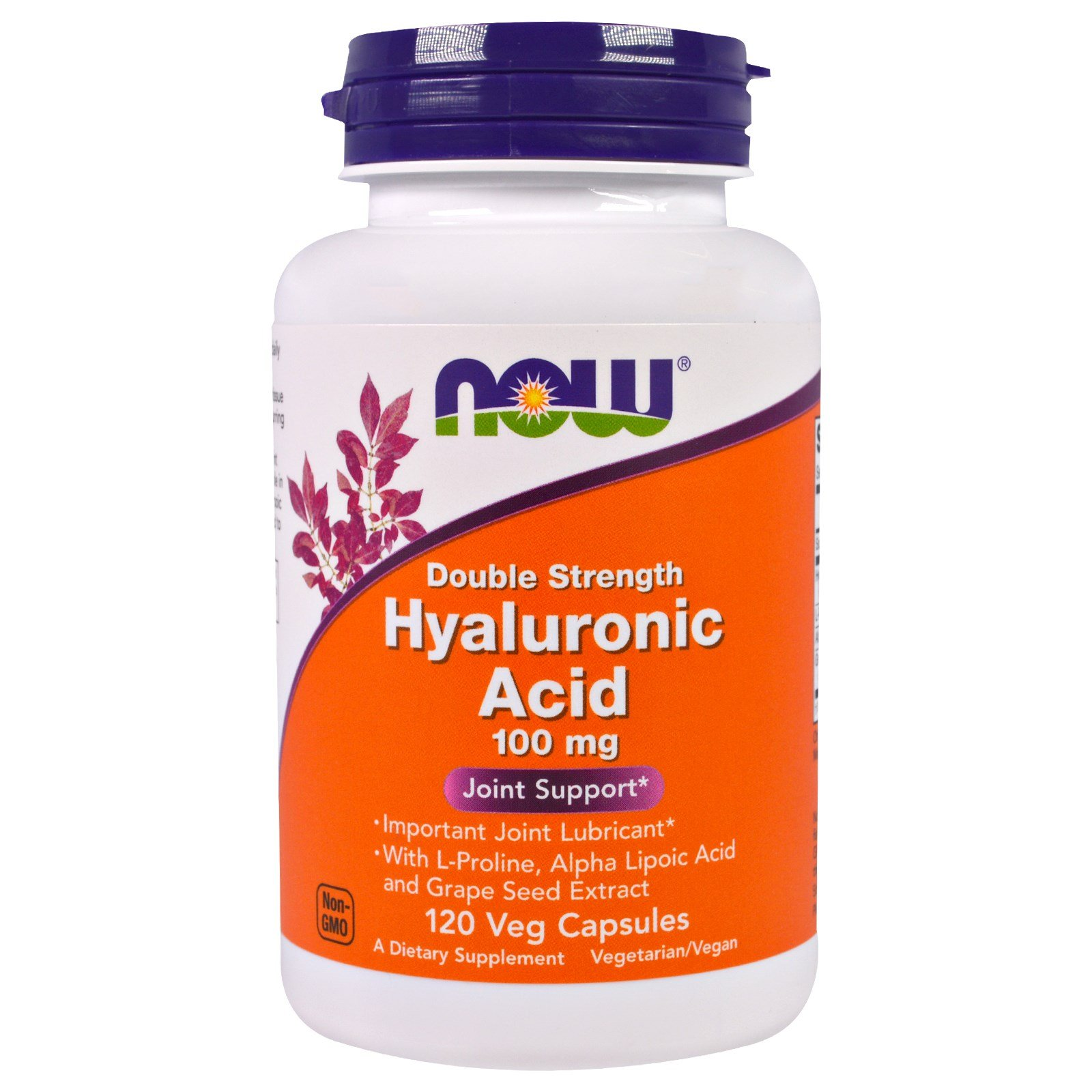 Now Foods Hyaluronic Acid 2X Plus Veg Capsules, 100 mg, 120 Count (Pack of 3)