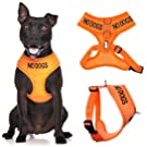 NO DOGS (Not good with other dogs) Orange Colour Coded Non-Pull Front and Back D Ring Padded and Waterproof Vest Dog Harness PREVENTS Accidents By Warning Others Of Your Dog In Advance (M)