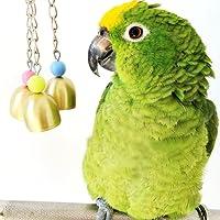 Keersi Bird Sweet Bells Chew Toy for Parrot Macaw African Grey Budgie Cockatoo Parakeet Cockatiels Conure Lovebird Finch Cage Toy