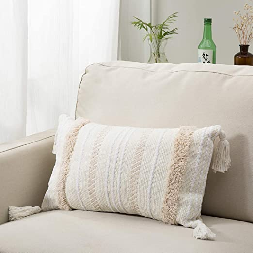 Dremisland Lumbar Small Decorative Throw Pillow Covers for Couch Bedroom  Sofa Embroidery Pillow Cases Cream Zipper Rectangle Pillows Cover with  Fringe