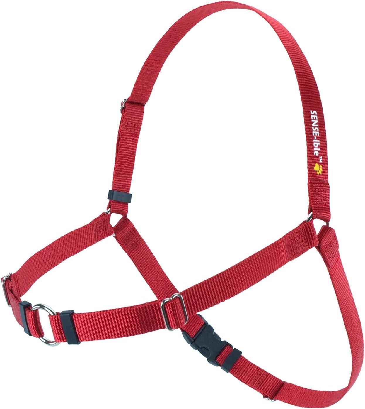 Sense-ible no-pull Arnés perro XL rojo: Amazon.es: Productos para ...