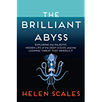 The Brilliant Abyss: Exploring the Majestic Hidden Life of the Deep Ocean, and the Looming Threat That Imperils It