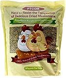 Hatortempt 5 lbs Non-GMO Dried Mealworms-High-Protein Mealworms for Wild Bird,Chicken, Ducks,Fish,Reptile, Tortoise…