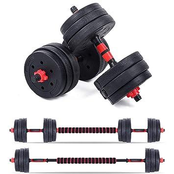 Leones de mancuernas de 10 kg, 20 kg, 30 kg gimnasio pesas Fitness ...