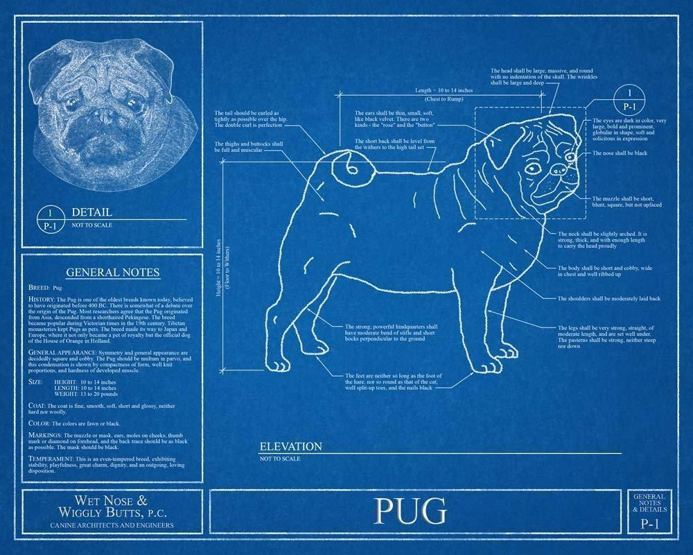 Amazon pug blueprint handmade malvernweather Choice Image