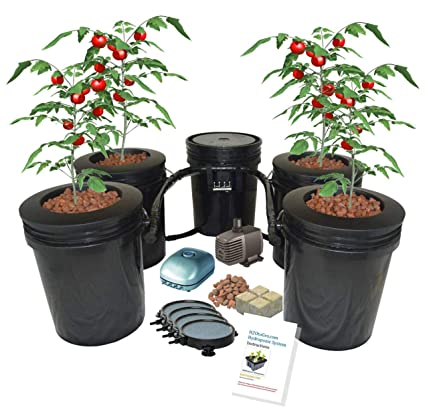 Hydroponic Recirculating Deep Water Culture System with Root Spa  (4) 5  Gallon Buckets + 1 Control