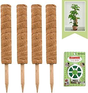 JOYSEUS 4 Pcs 15 Inches Moss Poles with 65 Feet Garden Twist Tie, Coir Moss Totem Pole for Climbing Plants Support, Suitable for Monstera Deliciosa, Sphagnum, Pothos and Other Potted Plants