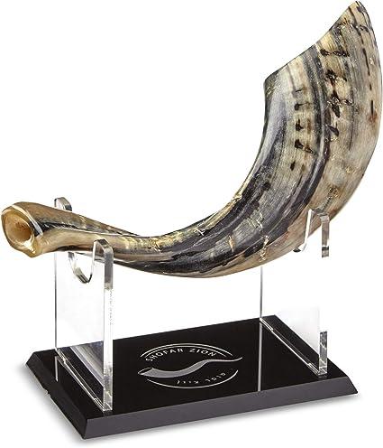 Shofar Zion Bocina Natural Sin Olor Fabricada En Israel Incluye Soporte Y Bolsa De Transporte Boquilla Lisa 13 0 13 8 In Musical Instruments