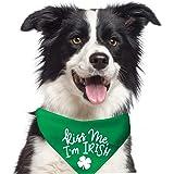 21bd6ea1b4b2 Amazon.com : TooLoud Kiss Me I'm Irish St Patricks Day Dog Shirt ...