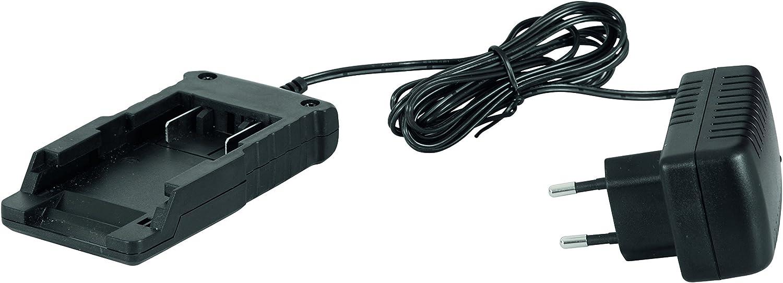 Grizzly Syst/ème de Batterie 24 V Standard-Ladeger/ät 2420