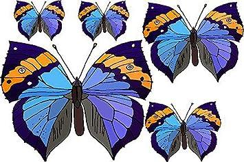 Amazoncom Set Of  Blue  Orange Butterflies Etched Vinyl - Window alert hummingbird decals amazon