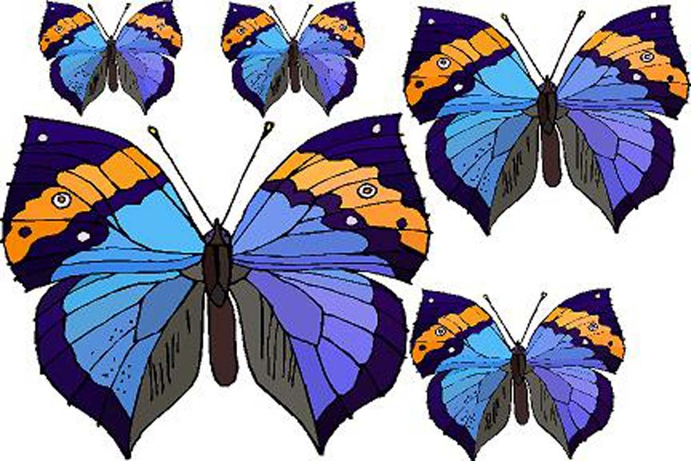 Set of 5 Blue & Orange Butterflies - Etched Vinyl Stained Glass Film, Static Cling Window Decal