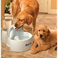 PetSafe Drinkwell Big Dog Water Fountain