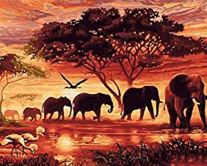 Paint by Numbers-DIY Digital Canvas Oil Painting Adults Kids Paint by Number Kits Home Decorations-Sunset Elephants 16 * 20 inch