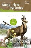 Faune et flore des Pyrénées