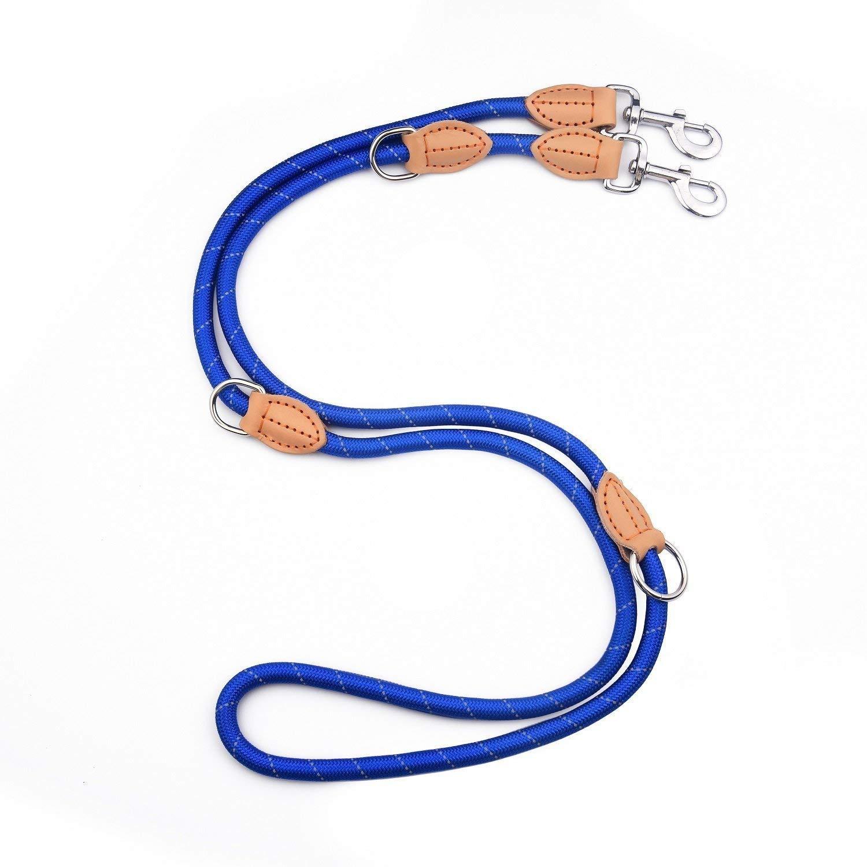 PetCay Premium Laisse de Chien bleu – Nylon Double laisse lumineux, robuste et trois fois réglable (1,1 m – 2 m) pour Moyens et Grands Chiens, Tressé et réfléchissant