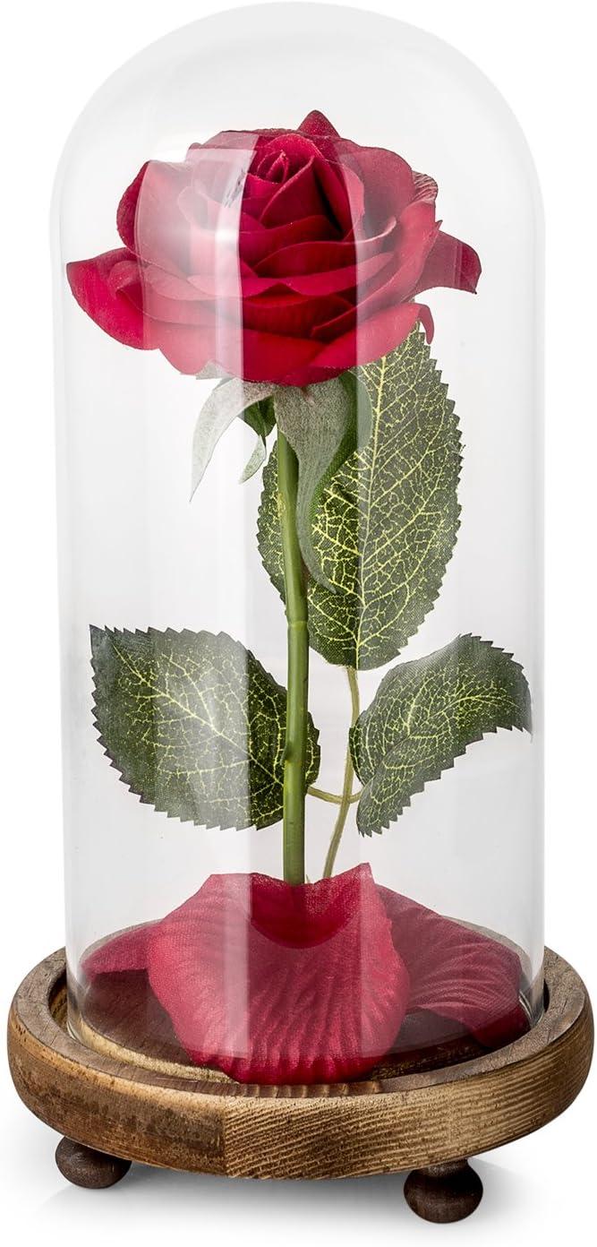 Kit de Rosas La Bella y la Bestia, Rosa de Seda roja y luz LED con pétalos caídos en la cúpula de Vidrio en la Base de Madera para la decoración del hogar Boda Cumpleaños Día de la Madre
