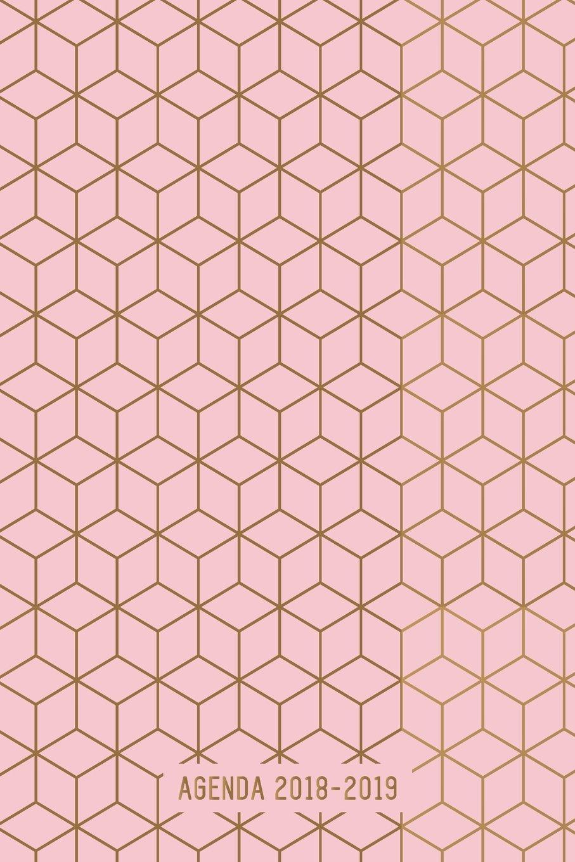 Agenda 2018-2019: Agenda Scolaire de Juillet 2018 à Août 2019, Semainier simple & graphique, motif géométrique carré Or & Rose Broché – 16 avril 2018 YesOuiPages 1717496148 NON-CLASSIFIABLE