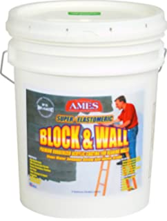Ames BW5 5 Gallon Block & Wall Acrylic White