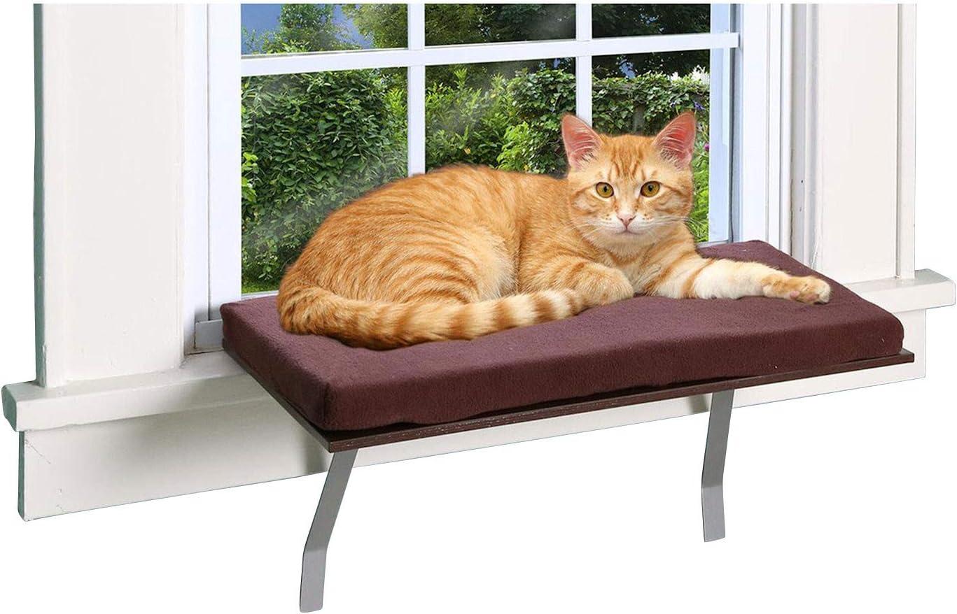 Pet Store Cat Window Perch : Pet Supplies