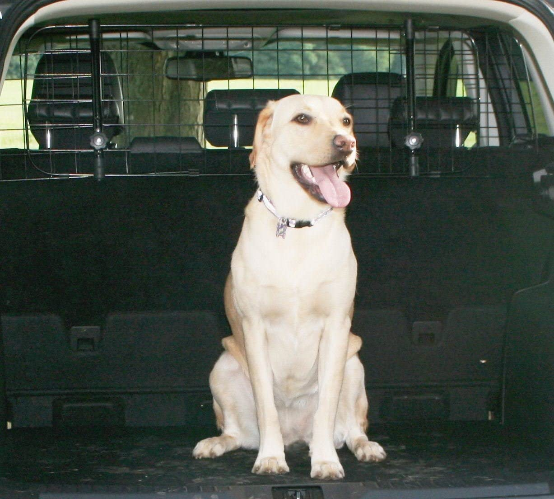 UKB4C Volvo V90 Car Headrest Black Mesh Dog Guard