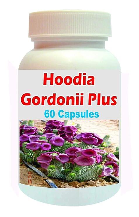Buy Tonga Herbs Hoodia Gordonii Plus Capsules 60 Capsules Buy