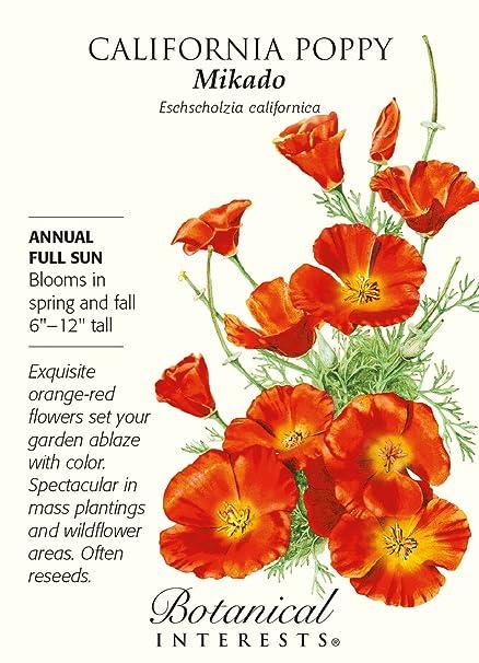 Amazon Mikado California Poppy Seeds 1 Gram Perennial