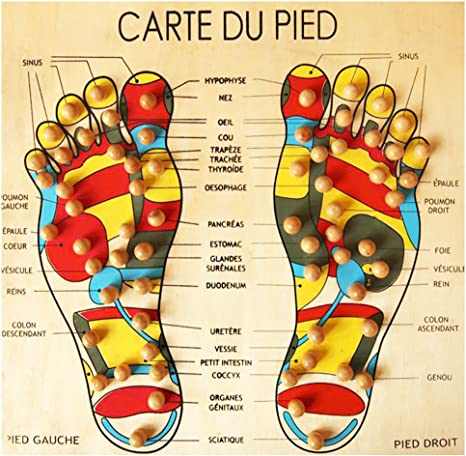 carte des pieds reflexologie plantaire Planche Bois Carte du Pied Massage Réflexologie/Acupression