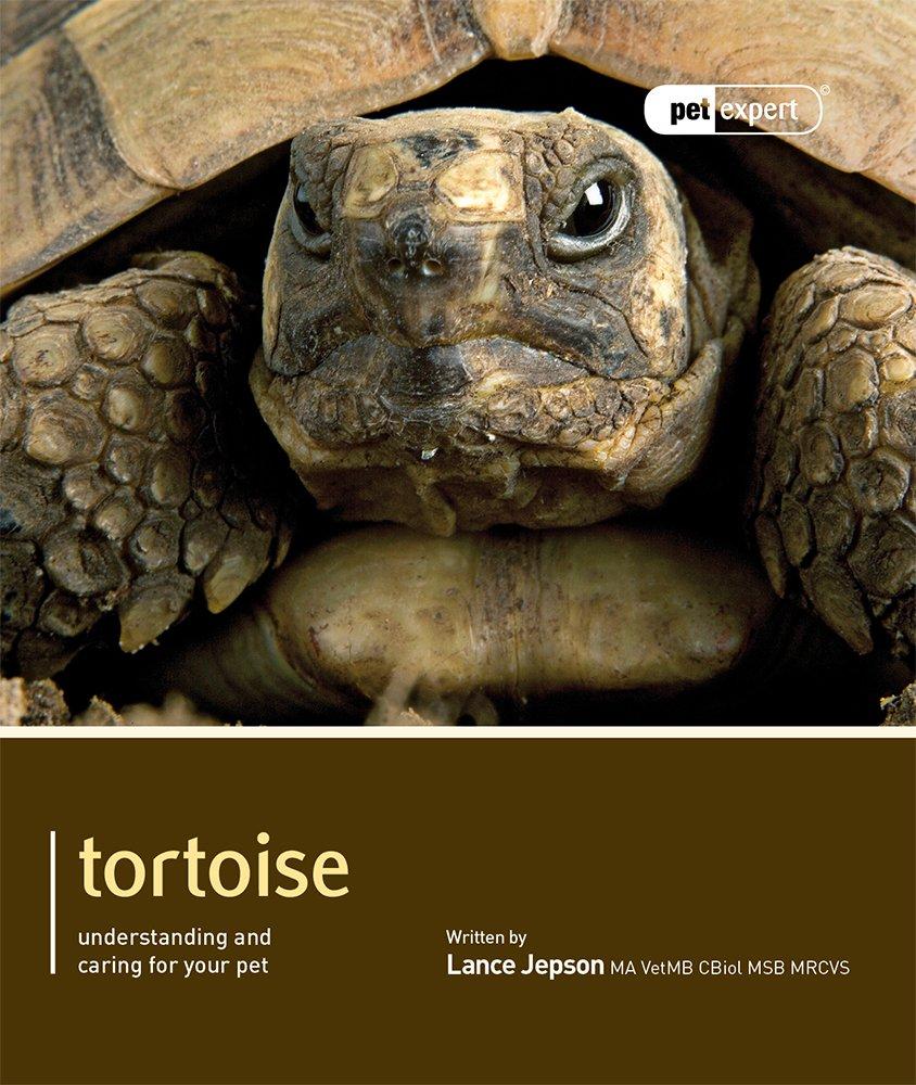Tortoise (Pet Expert)