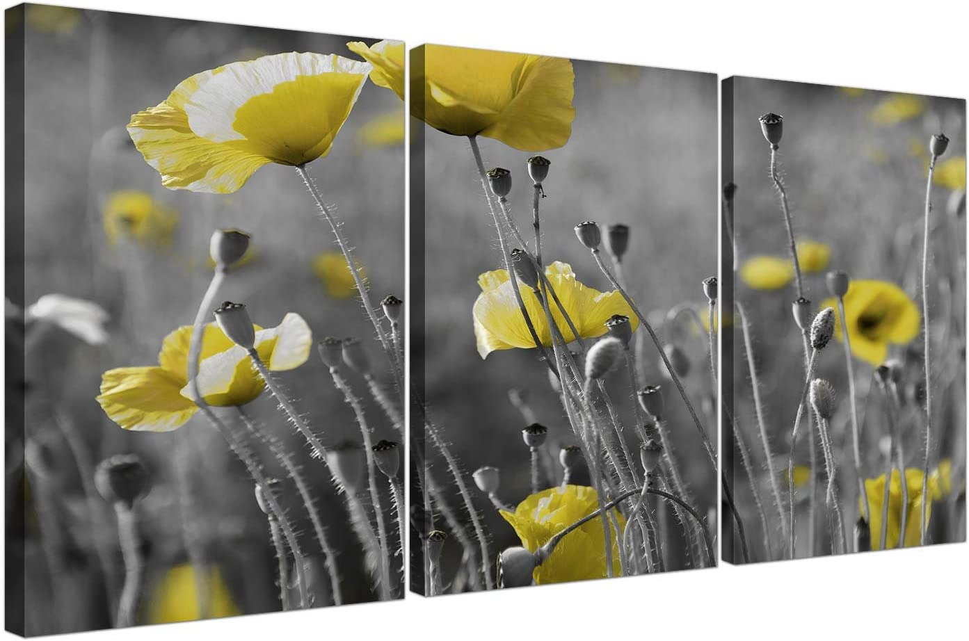 Wallfillers® - Juego de 3 lienzos con diseño de amapolas amarillas para tu salón – 3258.