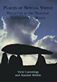 Places of Special Virtue: Megaliths in the Neolithic landscapes of Wales (Cardiff Studies of Archelogy)