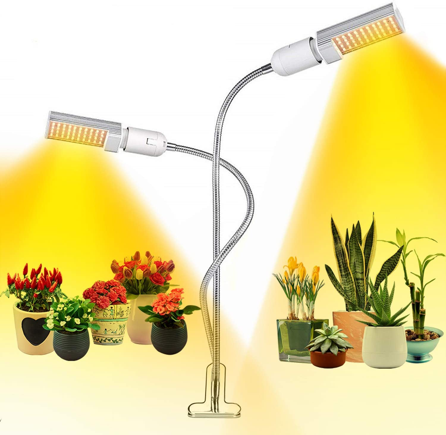 Optics Grow Lights for Seed Starting Full Spectrum LED Plant Grow Lamp for Succulent Indoor Plants Sun Lights 2 Head Clip Lamps Replaceable Bulb Adjustable Gooseneck
